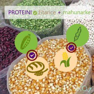 biljni proteini