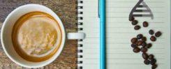 mapiran genom kave