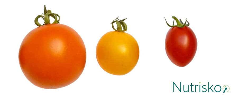 rajčica paradajz poma